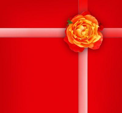Que regalar en el dia de san valentin for Que regalar por san valentin