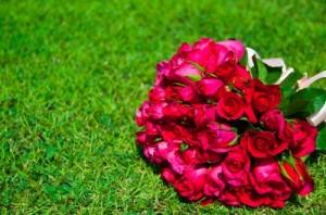 felicitaciones por boda,felicitaciones por casamiento,saludos por boda a prima,mensajes de felicitaciòn por bodas,textos de saludos por boda