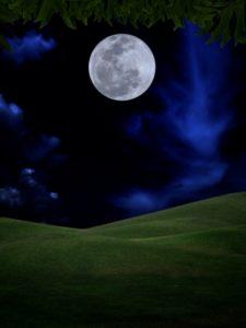 palabras de buenas noches, saludos de buenas noches, frases de buenas noches