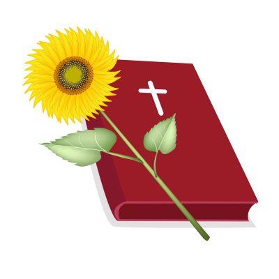 textos de Dios para enviar por celular, versos de Dios para enviar por celular