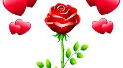 Nuevos Mensajes De Aniversario Para Enamorados