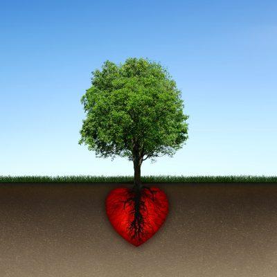 Lindos Mensajes De Reflexión Sobre El Amor