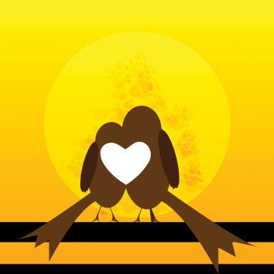 Bajar Bellos Mensajes De Amor│Lindas Frases De Amor