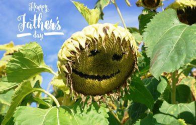 enviar dedicatorias para tarjetas del Día del Padre, bonitas frases para tarjetas del Día del Padre para compartir