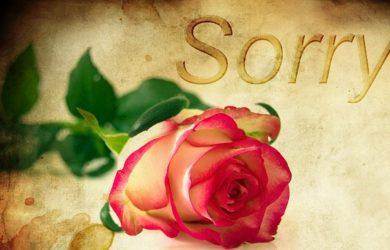 lindas frases de perdón para mi ex pareja