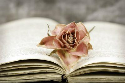 la muerte de un ser querido,la perdida de un ser querido,como actuar ante la perdida de un ser querido,que hacer en caso de un luto familiar
