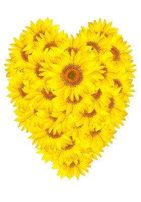 descargar mensajes bonitos por el Día de la amistad para tus amigos, compartir textos bonitos por el Día de la amistad para mis amigos