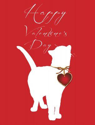 mensajes de San Valentìn para mi hermana,saludos de San Valentìn para mis hermano